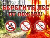 МЧС Крыма по 26 июня запретила разводить костры, использовать мангалы и запускать фейерверки