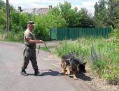 В Щелкино два часа искали пропавшую 6-летнюю девочку, приехавшую на отдых в Крым