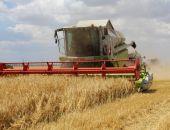 Крымские аграрии собрали уже почти треть урожая ранних зерновых культур