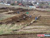 Археологи при раскопках в Крыму разгадали тайну погребальных церемоний в Боспорском царстве