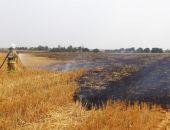 Пожарные бьют тревогу: в степях Крыма массово горит трава
