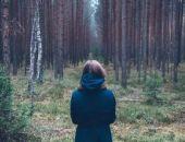 В Красноярском крае в лесу нашли девочку, которая потерялась неделю назад