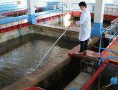 Планируют обновить систему обеззараживания на очистных сооружениях