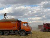Аграрии Крыма в этом году собрали рекордный урожай ранних зерновых