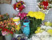 В преддверии 1 сентября в Феодосии цены на цветочную продукцию повысились на 10%:фоторепортаж