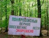 В Крыму запретили посещать леса до 26 сентября