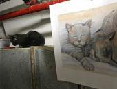 В Эрмитаже из-за задымления в Зимнем дворце погибли несколько котов