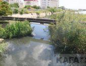 Речка Байбуга от улицы Федько до Черного моря:фоторепортаж