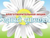 В Феодосии пройдет акция «Белый цветок»