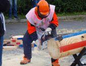 Крымские лесорубы заняли 11-е место на Чемпионате России среди вальщиков леса
