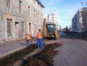 Вопрос с высадкой деревьев вдоль чулочной фабрики будет решен