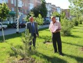 Зелеными насаждениями Феодосии займется спецкомиссия