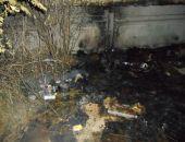 В Крыму полиция арестовала подозреваемого в сожжении бомжа в Керчи (фото)