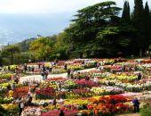 В Крыму Никитский ботанический сад назвал день официального начала «Бала хризантем»
