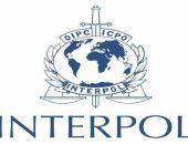 Интерпол провёл в Крыму спецоперацию «Пангея», в МВД отчитались о её результатах