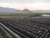 Крымских производителей коньяков и шампанских вин ждут внеплановые проверки