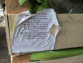 В Крыму похоронили 100 кг польского сельдерея