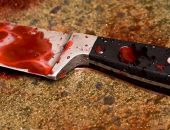 Пойдёт под суд крымчанка, убившая свою мать 37-ю ударама