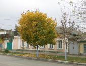В Крыму тепло, местами до +18, дождей не будет