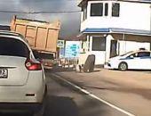 В Крыму на Ангарском перевале у КамАЗа на ходу отвалились задние колёса (видео)