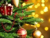 Учёные рассказали, какую опасность для здоровья несут новогодние ёлки