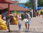 В Севастополе полиция начнет штрафовать за фото с голубями