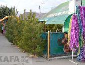 В Феодосии цены на елки остались на прежнем уровне