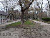 В Феодосии благоустраивают сквер на улице Горького:фоторепортаж