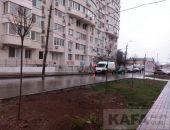 В Феодосии на улице Боевой высадили каштаны:фоторепортаж