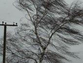 МЧС предупреждает об усилении ветра в Крыму в пятницу, 12 января