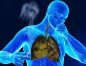 Что происходит с легкими после выкуривания 200 сигарет? (видео)