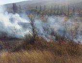 В Коктебеле в районе винзавода горел сухостой (фото)