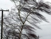В Феодосии ожидается сильный ветер
