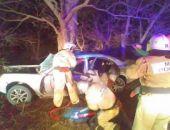 В Крыму на трассе Джанкой – Симферополь легковое авто разбилось о дерево (фото)