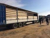Дагестанец нелегально сбывал древесину в Феодосии