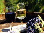 В Крыму появится винный туристический маршрут
