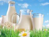 19% молочной продукции в России - фальсификат