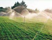 В этом году площадь поливых сельхозугодий Крыма обещают увеличить на 3,5 тыс га