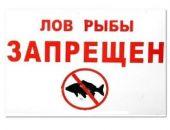 В Крыму действует двухмесячный нерестовый запрет на лов рыбы