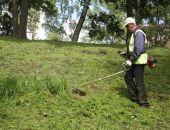 В Феодосии возбудили уголовное дело о завышении площади покоса травы