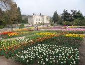 """В Никитском ботаническом саду сегодня открывается """"Парад тюльпанов"""""""