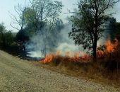 Близ Коктебеля снова горел сухостой (фото)