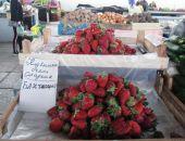 В Крыму ожидают резкое падение цен на клубнику