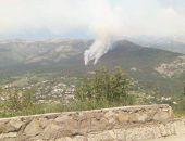 В Крыму лесной пожар в горах над Ялтой локализован