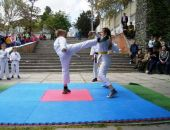 В Феодосии состоится «Парад единоборств»