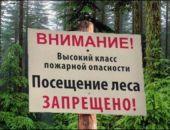 В Феодосии запретили посещать лес