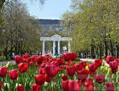В Феодосии высадят цветы и установят новые урны
