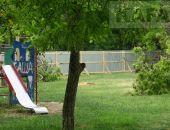 Получится ли спасти сквер у школы №13?:фоторепортаж