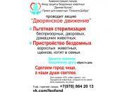 В Феодосии проходит акция помощи животным «Дворянское движение»