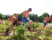80% россиян проведут летний отпуск дома или на даче